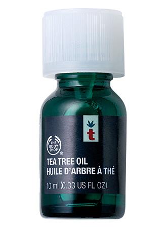Descubre el aceite de árbol de té