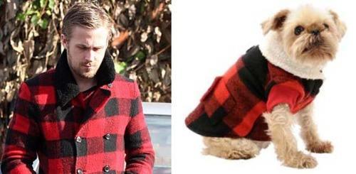 El Tumblr del momento: Ryan Gosling vs. Puppy