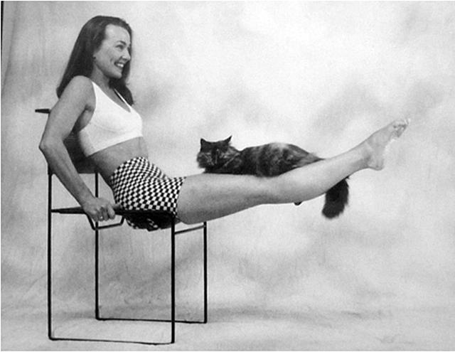 Catflexing: hacer ejercicio con tu gato