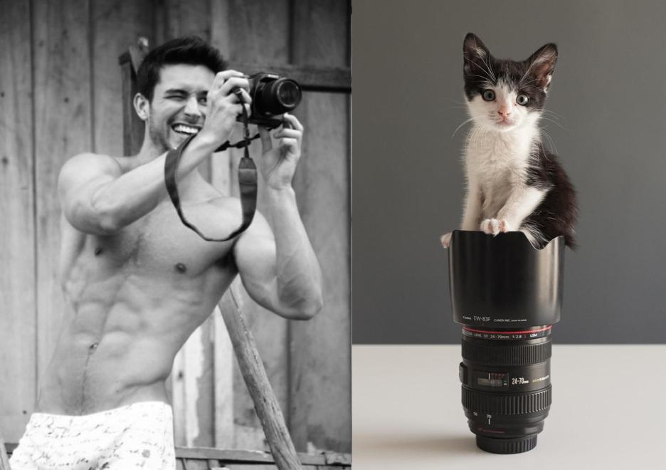El paraíso: ¡hombres y gatitos!