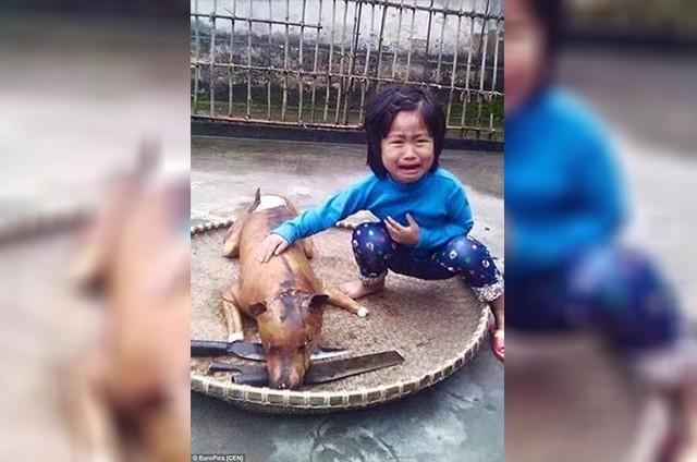 Una niña pierde a su perro y lo encuentra en un puesto de comida