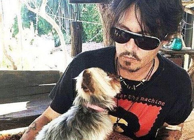 Johnny Depp ¿condenado a diez años de prisión?