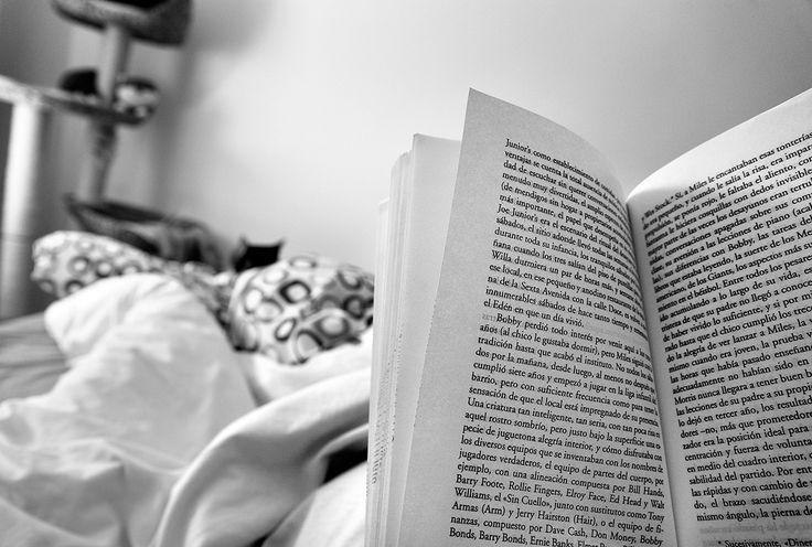 La extraña condena a un pedófilo italiano: comprar libros a su víctima