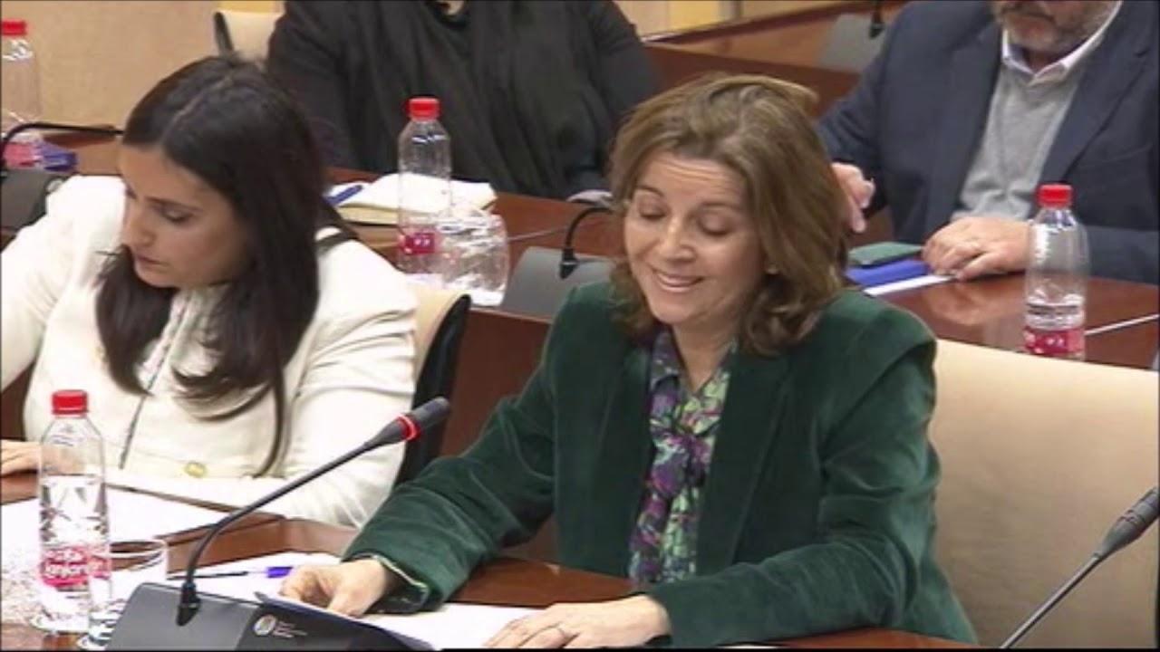 El machismo extremo de VOX en el Parlamento Andaluz que asusta a las mujeres